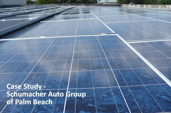Case Study - Schumacher Auto Group of Palm Beach