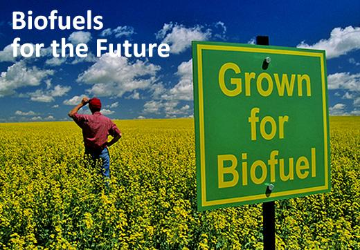 Biofuels for the future