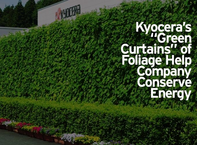"Kyocera's ""Green Curtains"" of Foliage Help Company Conserve Energy"