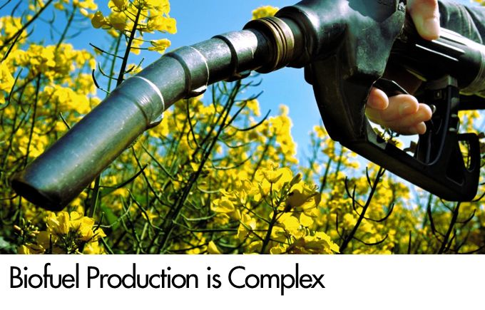 Biofuel Production is Complex