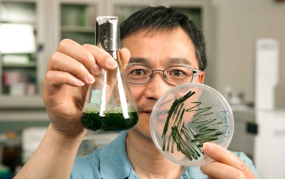 Photo of a man holding a beaker of green liquid and a petri dish with green growth.