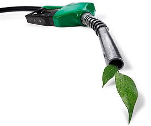 http://fuelevolution.files.wordpress.com/2010/06/alternative-fuel-car.jpg