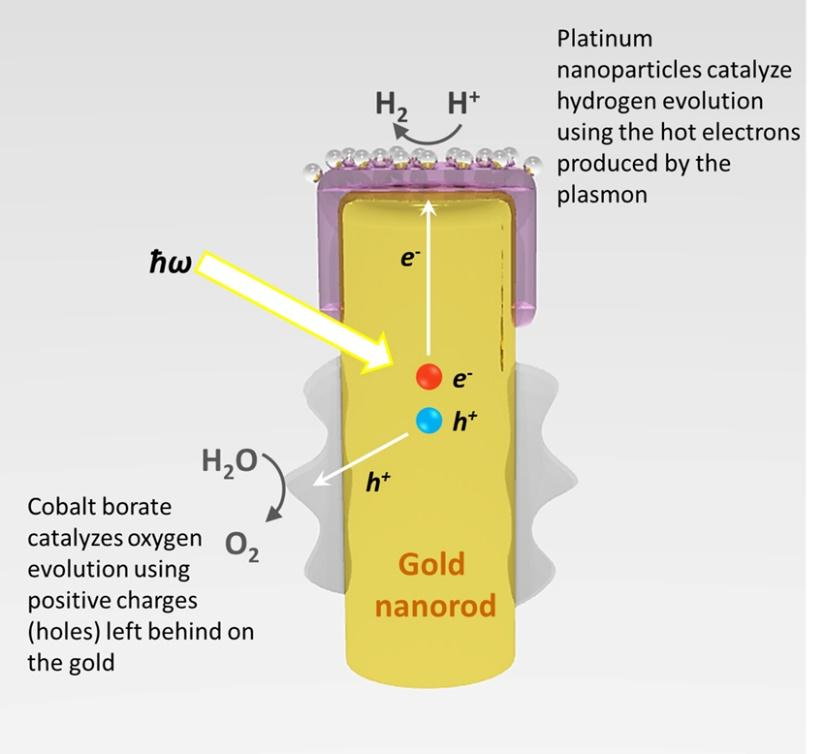 Image result for gold nanoparticle + solar energy = hydrogen