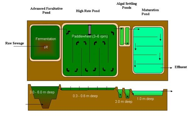 Image result for Advanced Integrated Wastewater Pond Systems