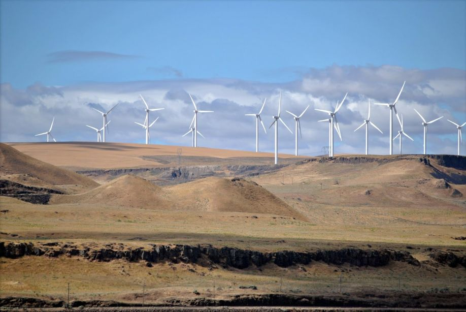 https://upload.wikimedia.org/wikipedia/commons/0/0f/Shepherds_Flat_Wind_Farm_2011.jpg