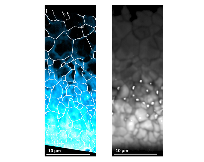 (Left) map of the selenium distribution in the solar cell material. The brighter turquoise/white regions are where there are higher concentrations of selenium. (Right) This is a corresponding map of the luminescence emitted from the material. It can clearly be seen that there is brighter luminescence where there is more selenium.